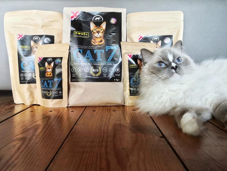 karma sucha cat7, cat7 test, cat7 opinie, cat7 dla kotów, karma sucha dla kota, polska karma sucha dla kota, cat7 recenzja, kot testuje
