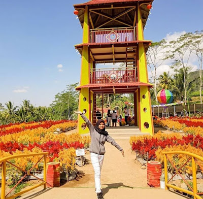 Tiket Masuk Taman Bunga Pagoda Magelang 2020, Taman Bunga Pagoda Magelang 2020, lokasi Taman Bunga Pagoda Magelang, alamat Taman Bunga Pagoda Magelang