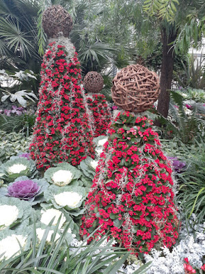 Allan Gardens Conservatory 2019 Winter Flower Show fifthteen by garden muses--not another Toronto gardening blog