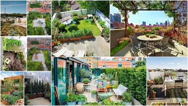 Πράσινες Στέγες - Κήποι σε Ταράτσες