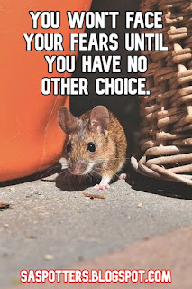 You won't face your fears until you have no other choice.