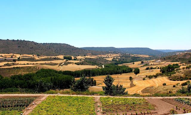 Dónde ver campos de lavanda en España. Campos de lavanda en Brihuega, Gudalajara. Qué ver en Brihuega