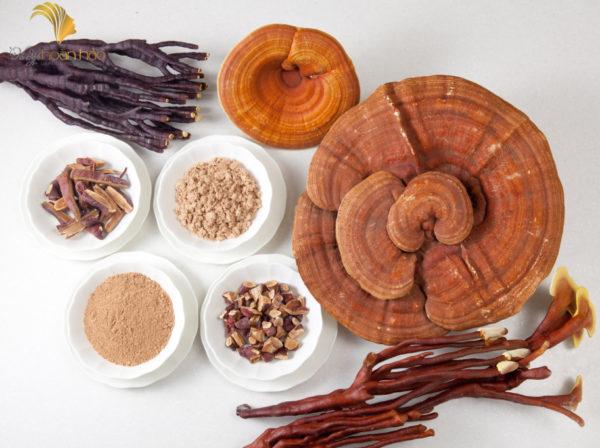 ưu điểm khi dùng nấm linh chi đỏ
