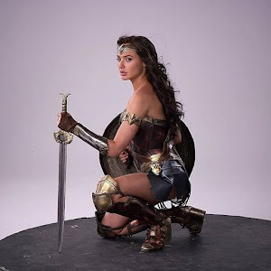 Wonder Women The Hero of Justice