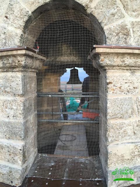 sitemas anti aves en Valladolid