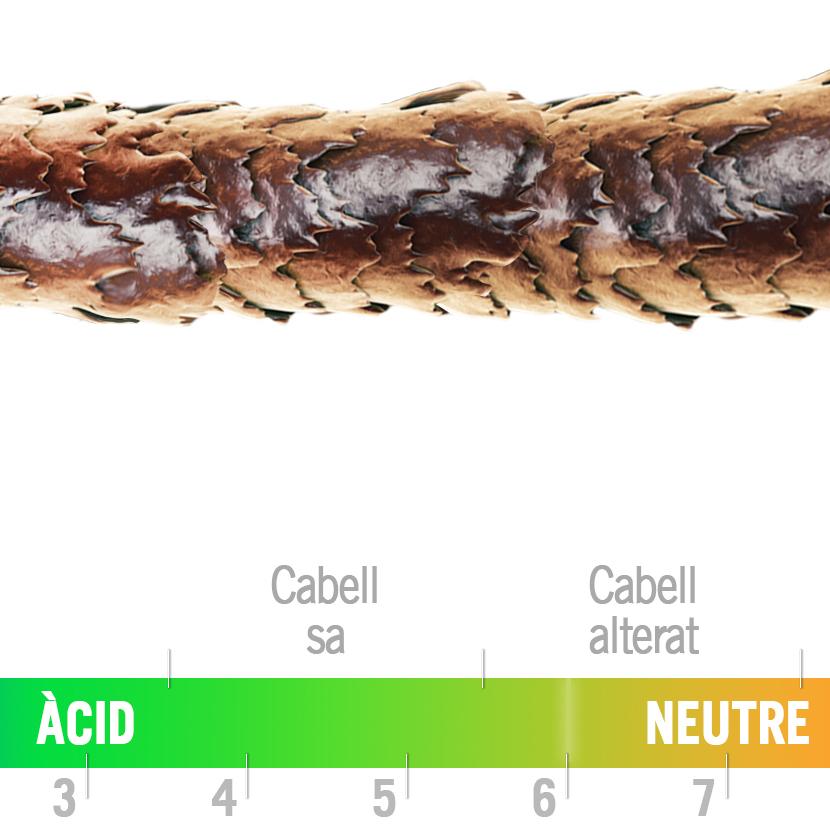 Perruqueria LeLook - Sabadell - El pH i els estats del Cabell