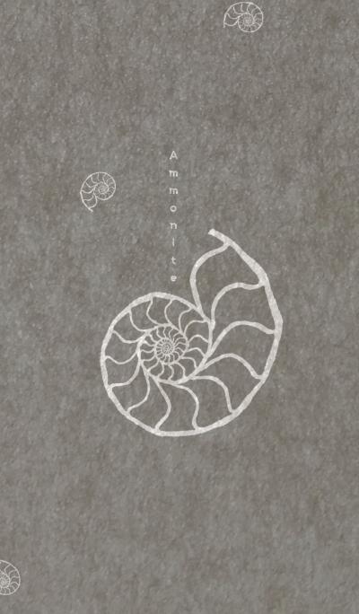 Ammonite spiral