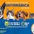 Prefeitura de São Desidério inicia Campanha de Vacinação Antirrábica no município seguindo protocolo para evitar contágio do coronavírus
