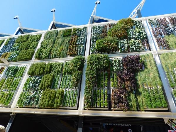 giardino verticale orizzontale