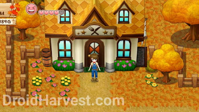 Bastian's Restaurant Harvest Moon: Light of Hope
