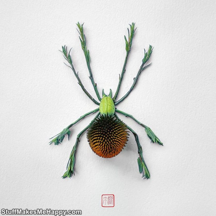 Nature Inspired Crafts Amazingly Wonderful Insects Made Out of Plants