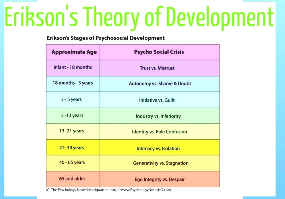Erikson\u0027s Stages Of Psychosocial Development - Stages In Human - vocational development stages