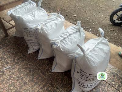 4-Benih padi yang dibeli EUIS SUTARSIH Sukoharjo, Jateng (Sebelum packing karung ).