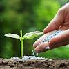 Mengenal Pupuk Dasar NPK Dalam Pertanian