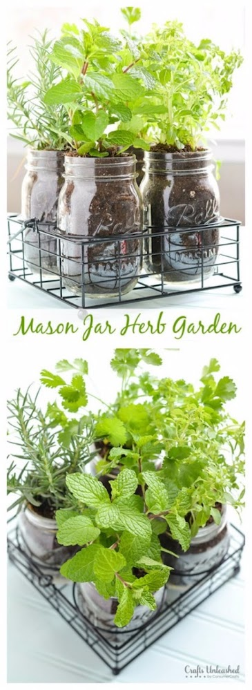 Creative Herb Garden Ideas for Indoors and Outdoors