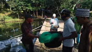 Di Tengah Pandemi Covid19, DKP Dompu Bagikan Ratusan Ribu Bibit Ikan