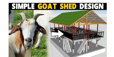 10 Tips to build a good Goat Shelter | House