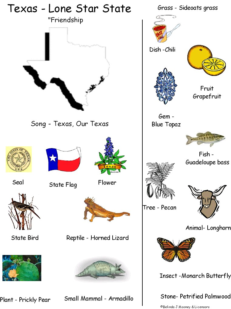 state of texas symbols coloring pages - mrs jackson 39 s class website blog texas independence day