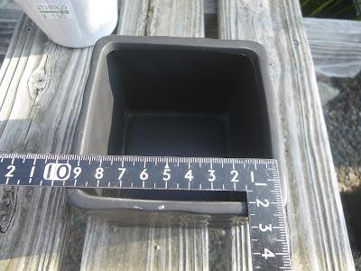 鉢の大きさ