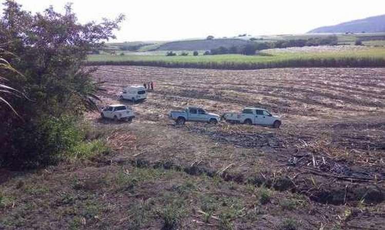 Van 22 cadáveres exhumados en fosa de Xalisco, Nayarit