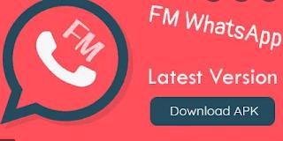 apk.fm fmwa 8.95 download