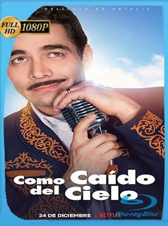 Como caído del cielo (2019) HD [1080p] Latino [GoogleDrive] SilvestreHD