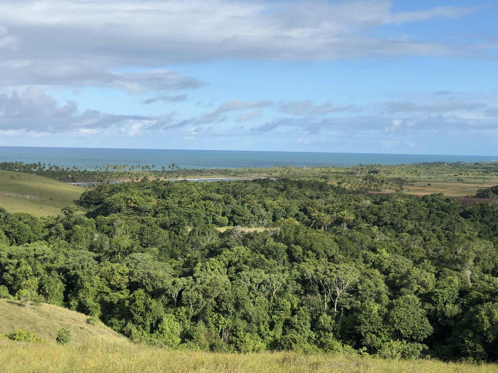 Vista do Farol - Península de Maraú