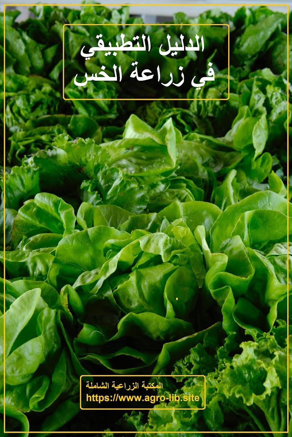 كتاب : الدليل اتطبيقي في زراعة الخس