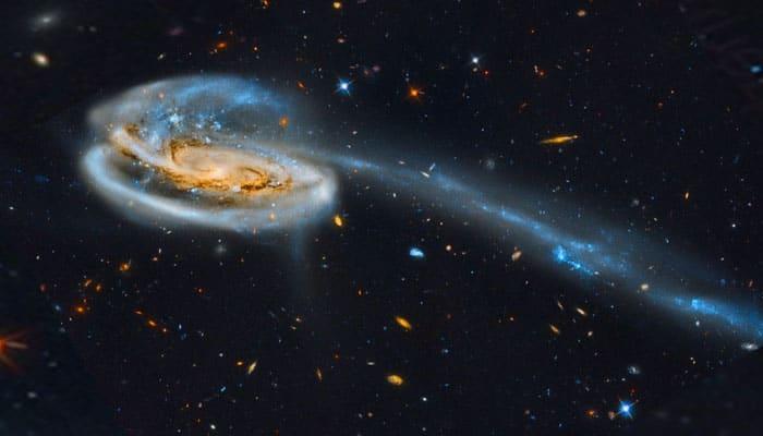 Galaksi Tadpole
