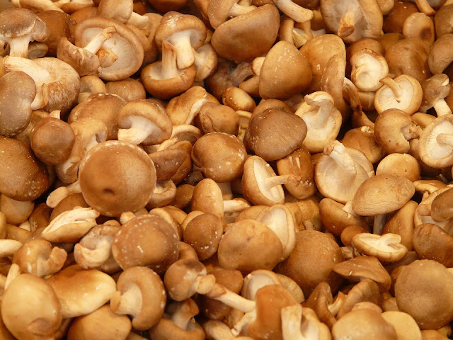 Mushrooms : Types of mushrooms, how to store and how to clean the mushroom.