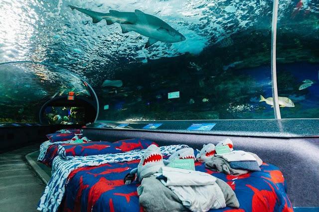 Ripley Aquarium (Toronto, Canada)