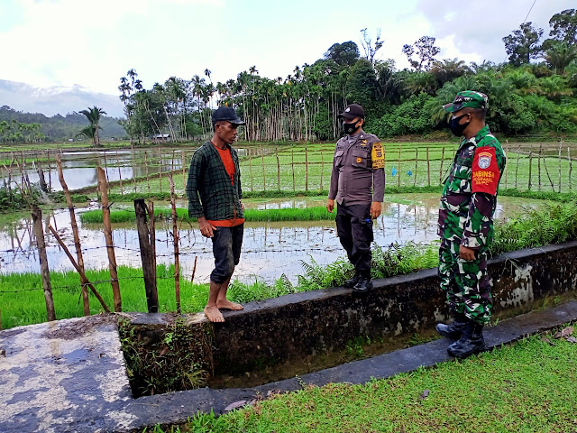 Jaga Normalisasi Pengairan, Babinsa Posramil 05/PC lntensif Cek Saluran Irigasi Sawah