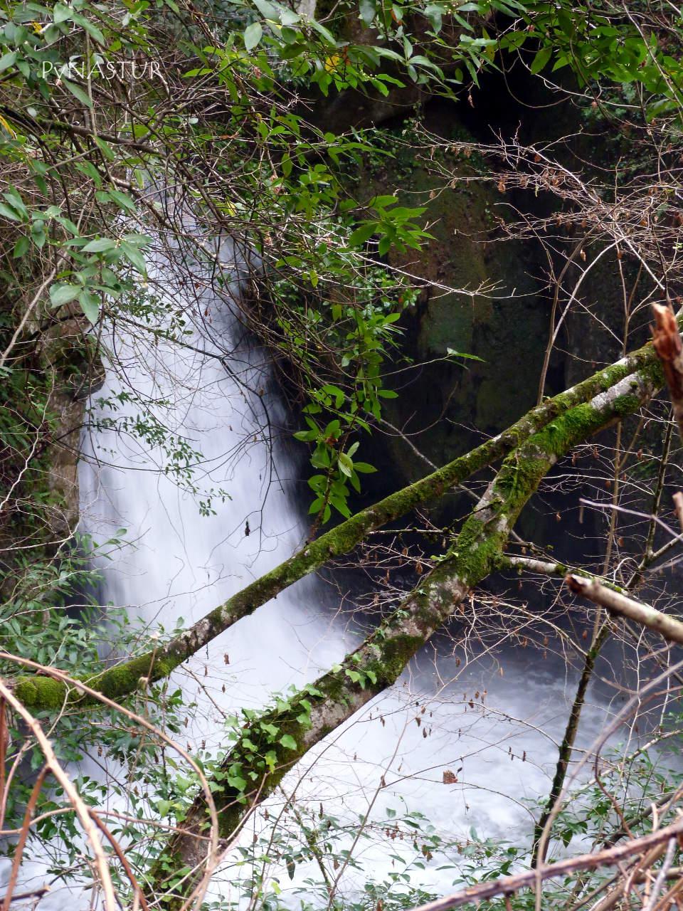 Río Viboli - Foz de Los Andamios - Parque Natural de Ponga - Asturias
