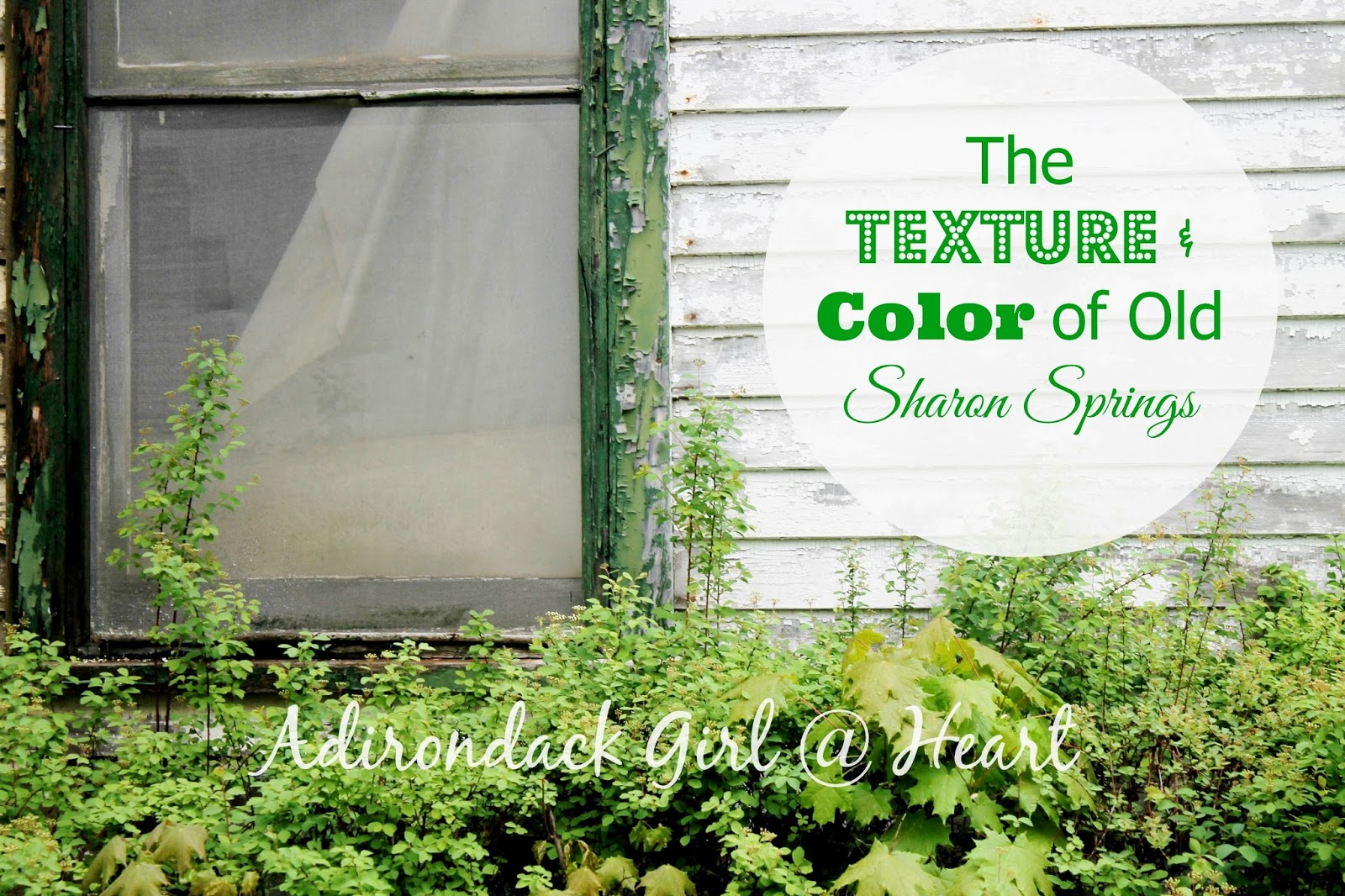 The Texture & Color of Old Sharon Springs