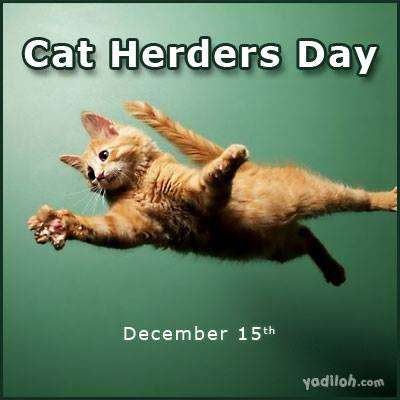 National Cat Herders Day Wishes Images