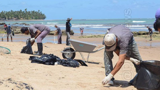 detentos limpam praias alagoas oleo direito