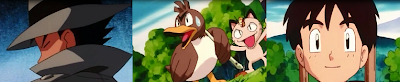 """Pokémon Capítulo 29 Temporada 3 Una Historia Con Farfetch""""d"""