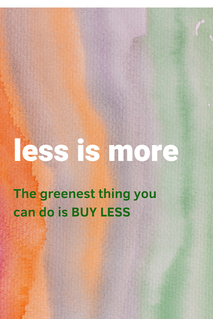 The greenest thing you can do is BUY LESS