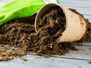 pupuk-organik-menyuburkan-tanah.jpg