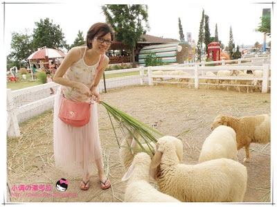 SWISS SHEEP FARM, Hua Hin
