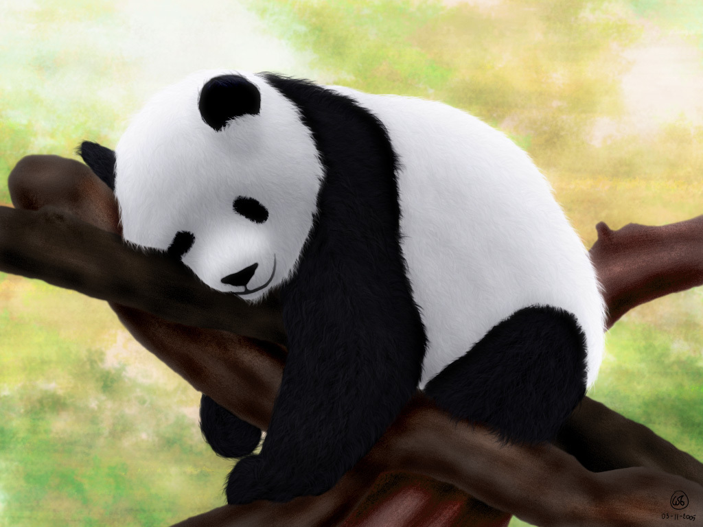 3d Tree Live Wallpaper Desicommentfirst Baby Panda Wallpapers