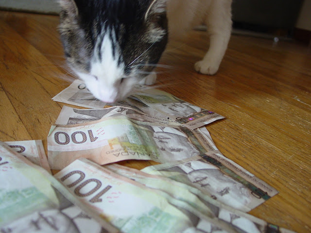 meow money (or meowney) by Travis Nicholson! from flickr (CC-NC)