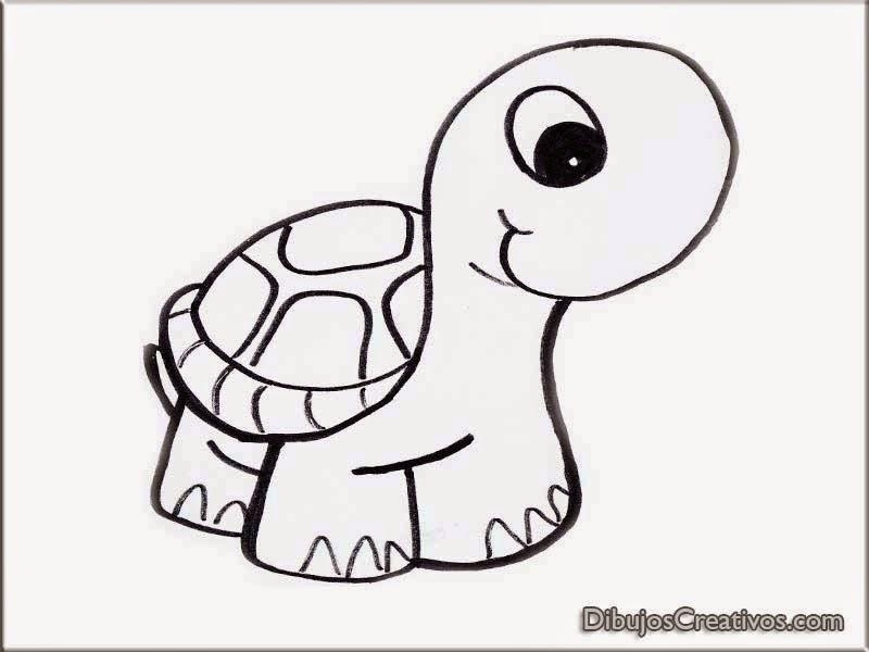 Anime Bonito Dibujos: Dibujo De Tortuga. Dibujo Para Colorear Tortuga Sonriendo