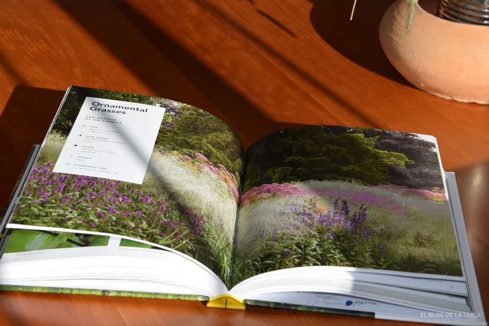 gramíneas ornamentales para jardines naturalistas