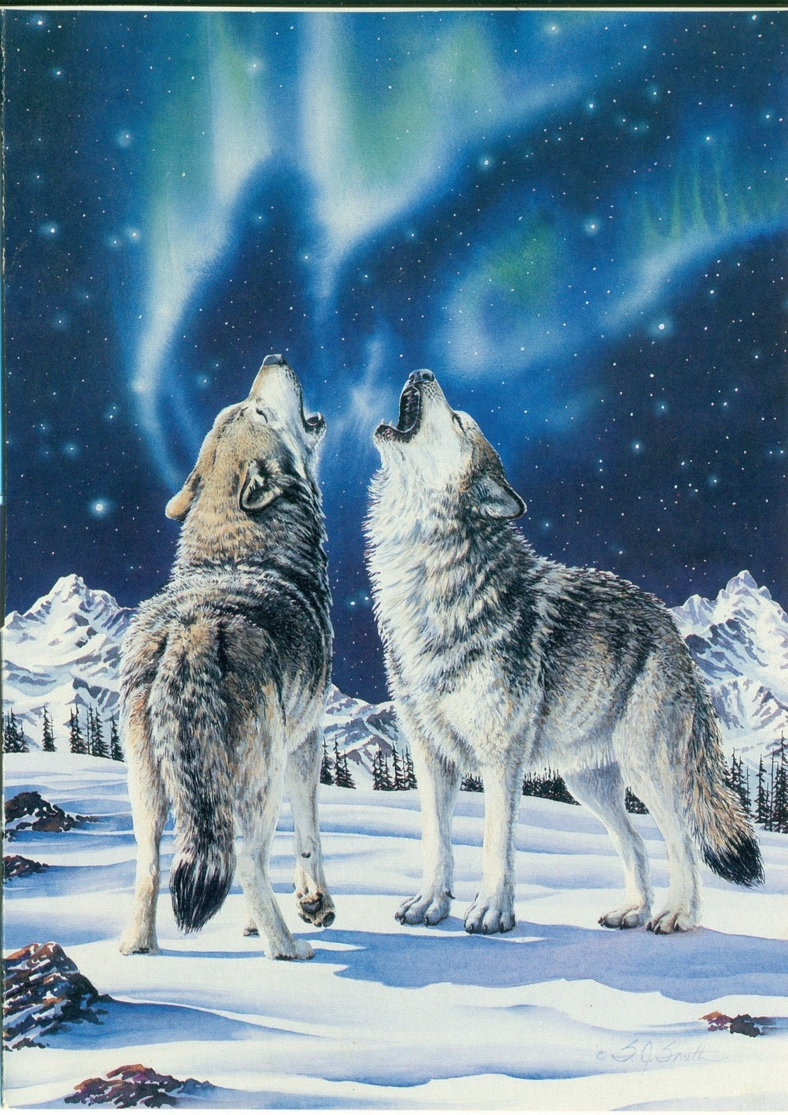 She Wolf Night Magic Of The Snow