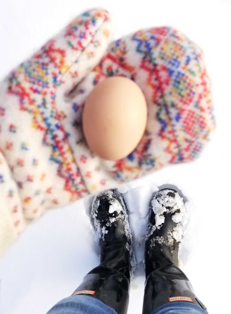 How to Keep Your Chickens Laying Eggs Through the Winter