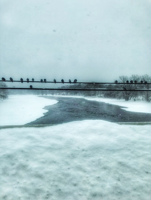 crossing the Penobscot River in Maine, covered in snow and ice