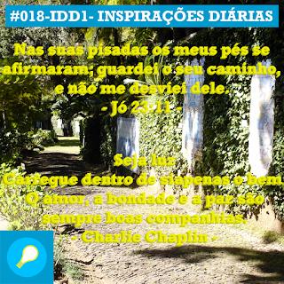 018-IDD1- Ideia do Dia 1