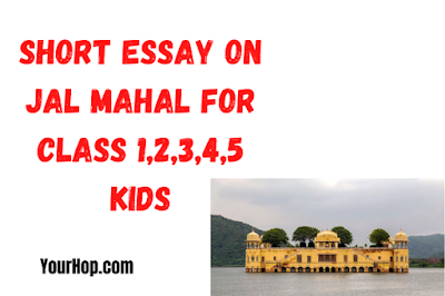 Essay on Jal Mahal