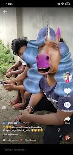 Efek Filter Wajah Kuda Poni Instagram Tiktok Sedang Hits